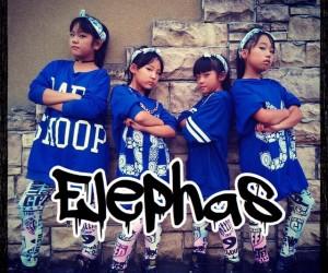 枚方ジュテからNEWダンスチーム誕生『Elephas』
